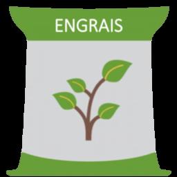Engrais vigne