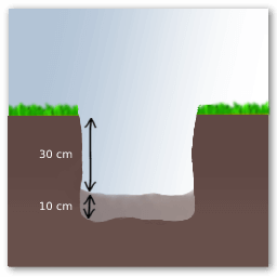 Planter pied de vigne terre