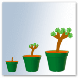 date plantation vigne pot