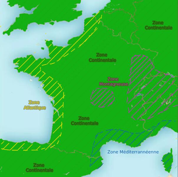 Carte de plantation des vignes par région