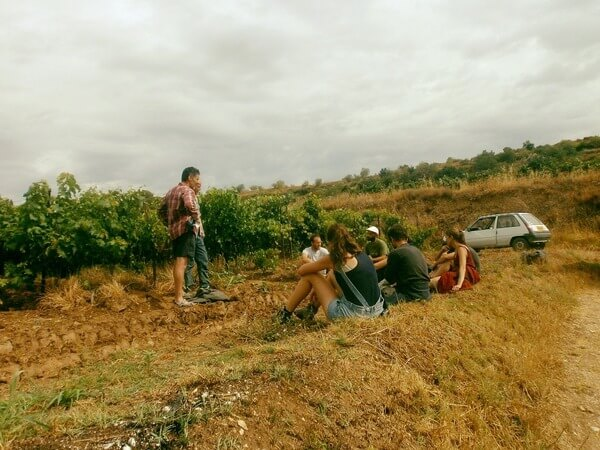 Formation agriculteur viticulture