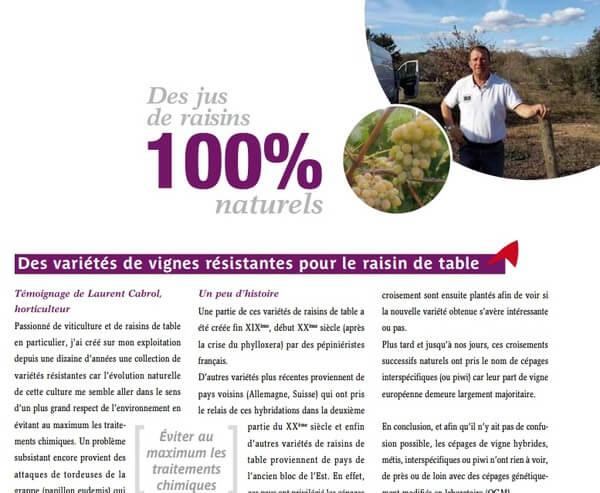 Article presse Chambre agriculture vigne