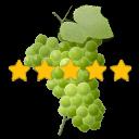 icone-qualite-pieds-de-vigne-raisin